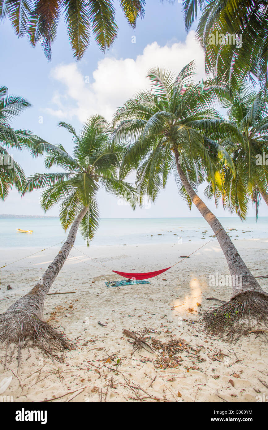 A hammock between two palm trees facing the Andaman sea on Havelock Island - Stock Image