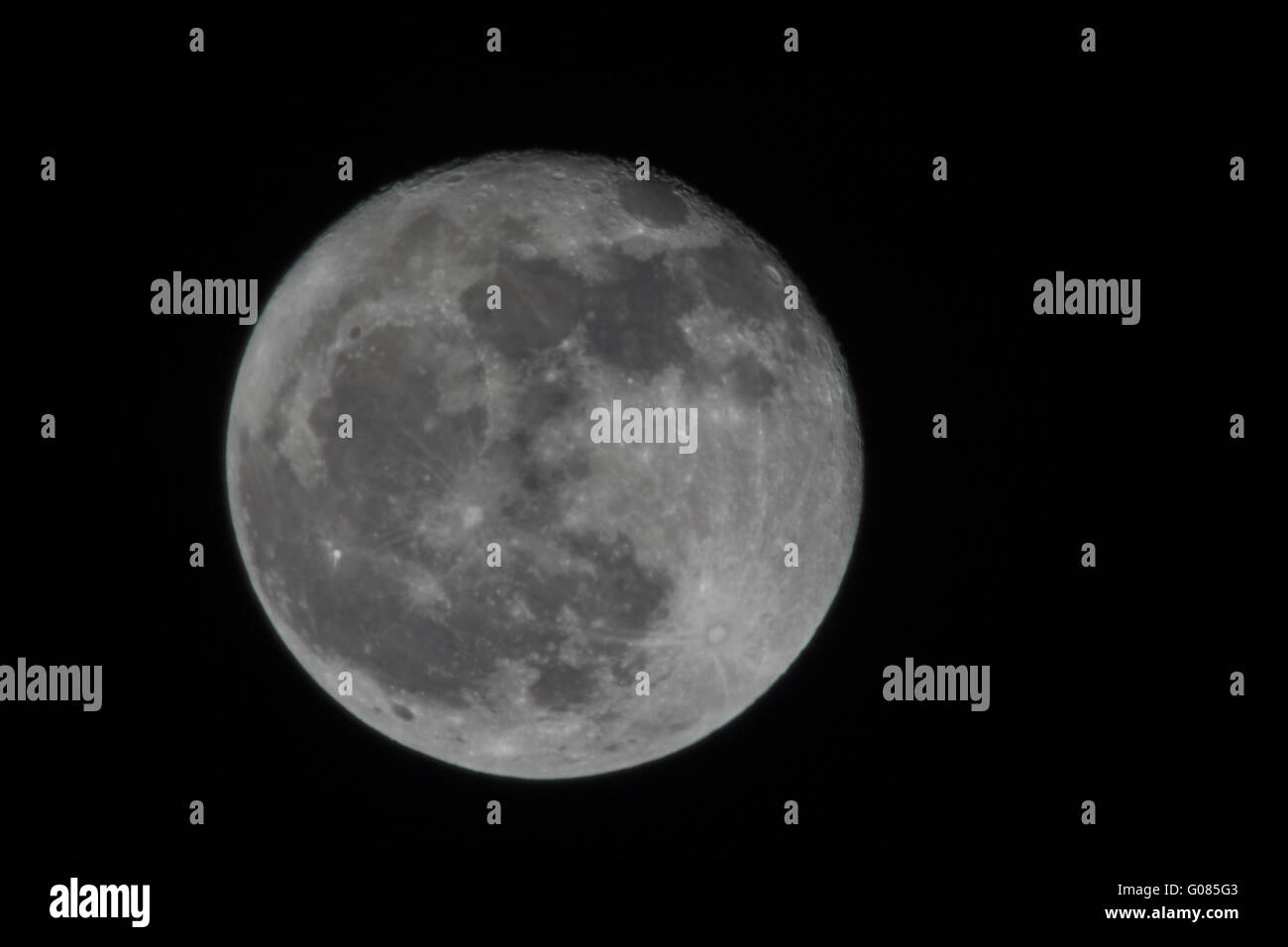 moon - Stock Image