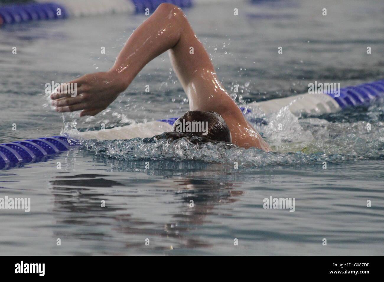 Freestyle swimming - Stock Image