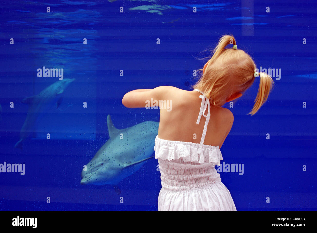 girl with delphin - Stock Image