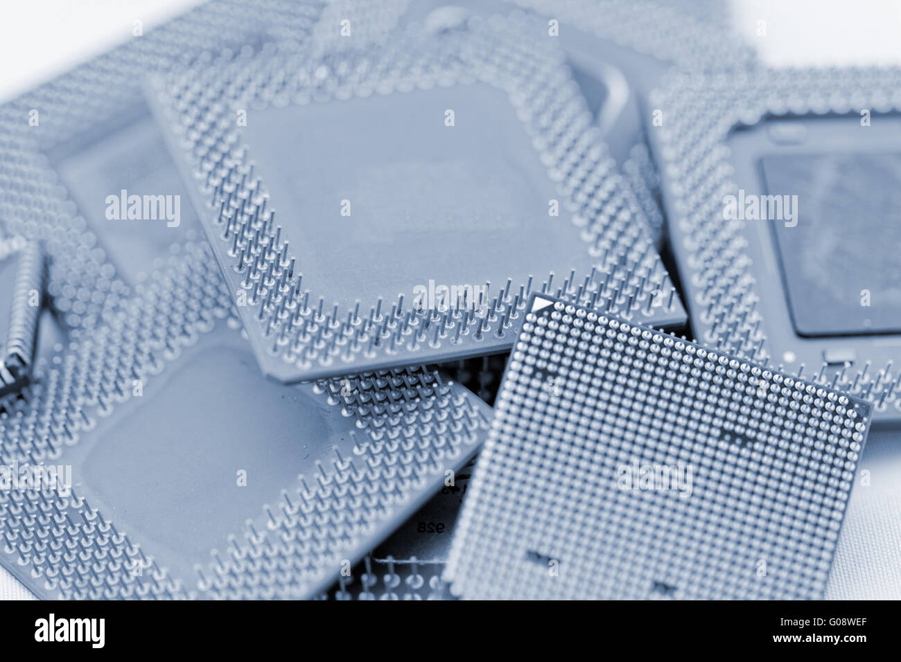 close up of many different cpu processors in blue - Stock Image
