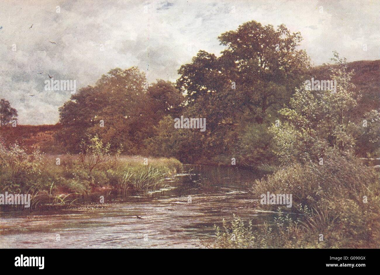 TILFORD: Wey valley: Wey at Hankley Common, antique print 1912 - Stock Image