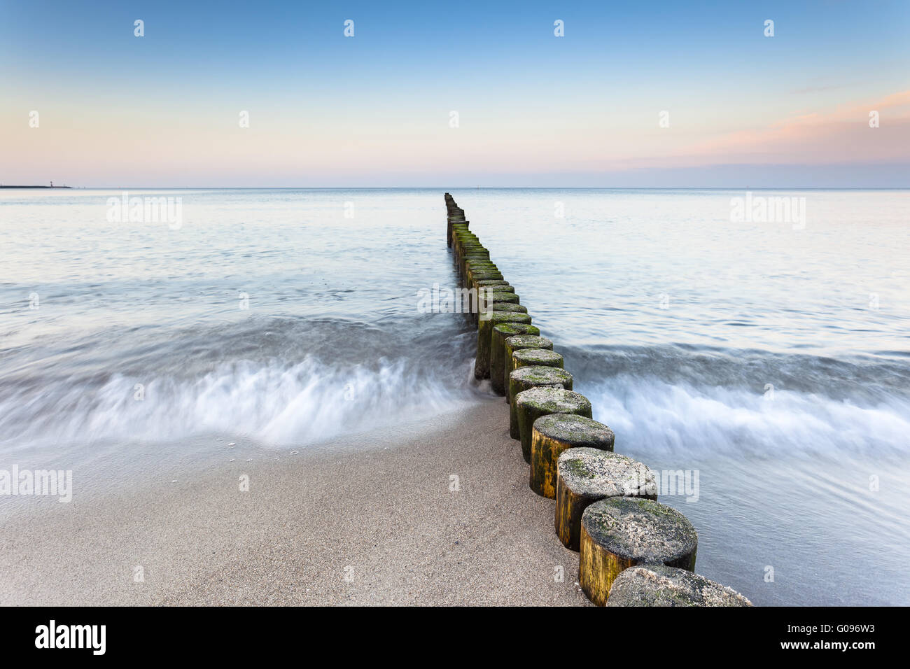 wooden groynes at the beach of german baltic sea - Stock Image