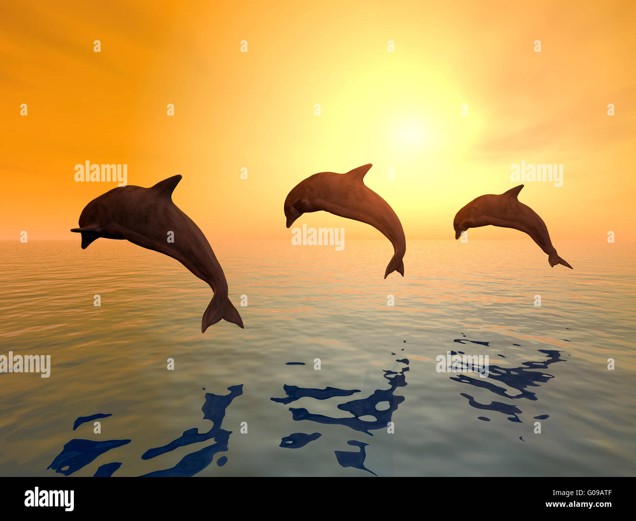 Jumping Dolphins - Stock Image
