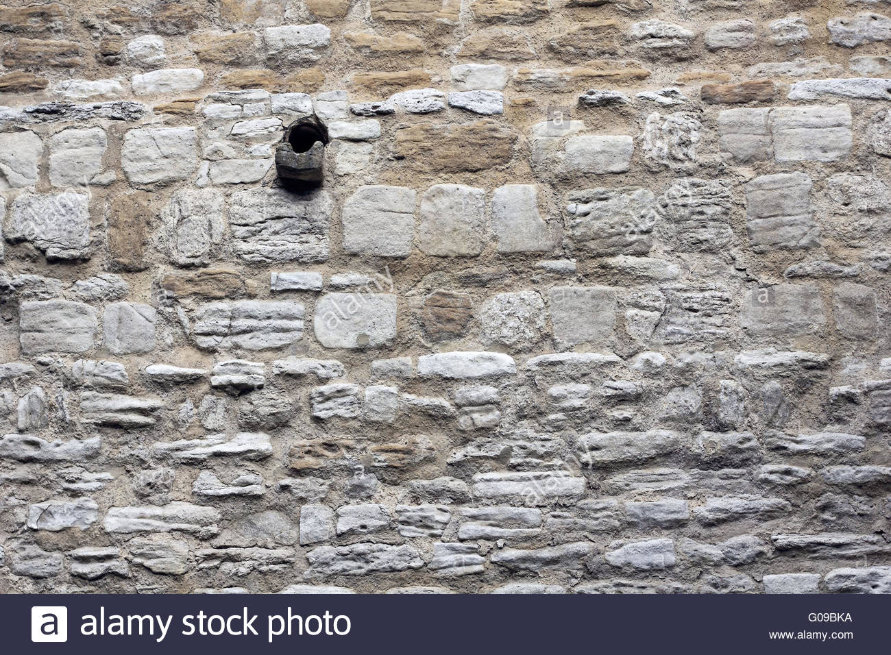Muschelkalk wall with gargoyle at the Eckartsburg - Stock Image