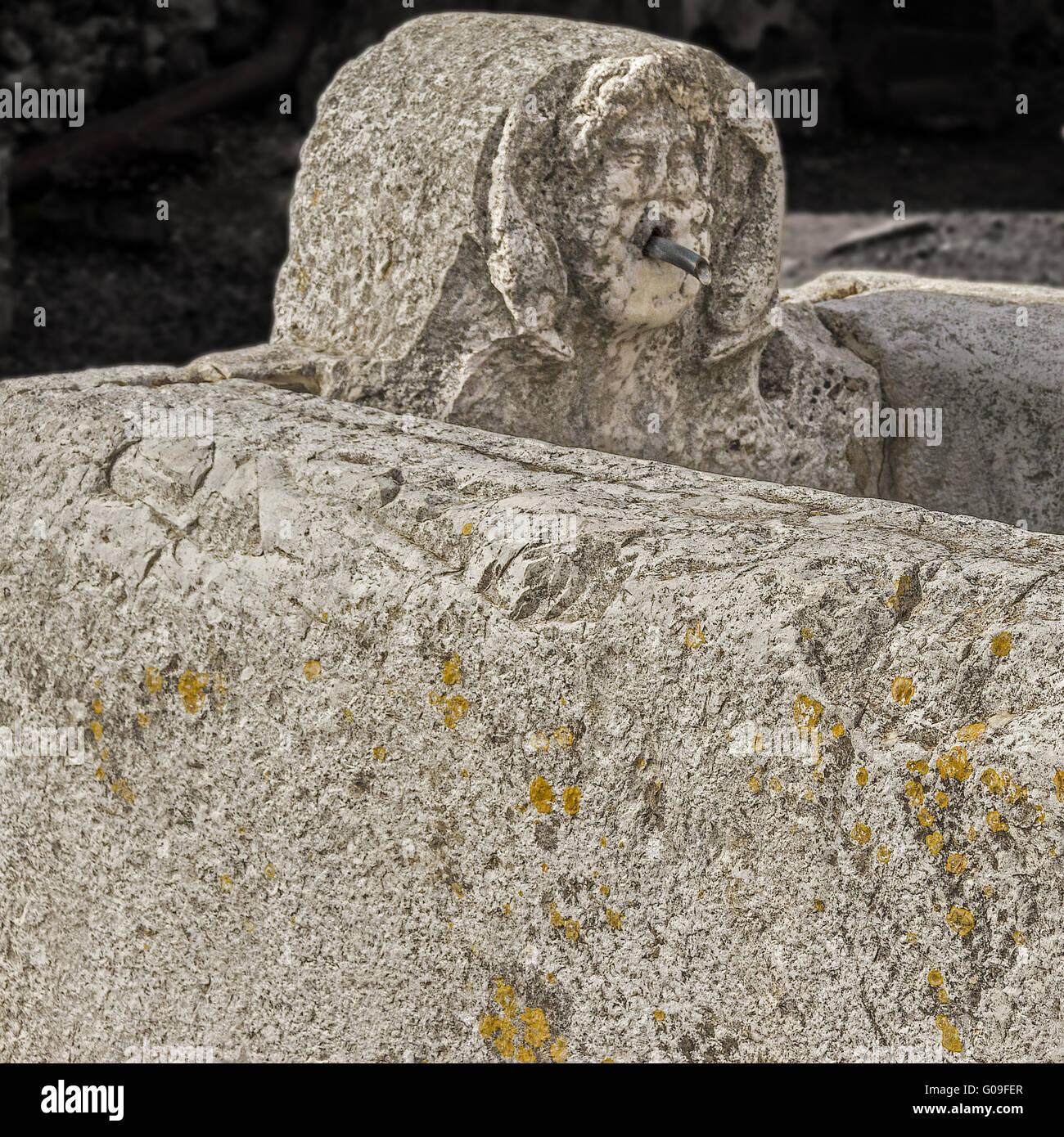 Horse Trough and Drinking Fountain Herculaneum Ita - Stock Image