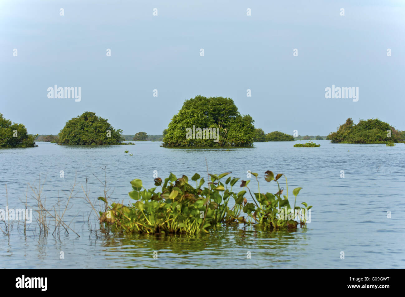 Flooded areas at Tonle Sap lake, Cambodia Stock Photo