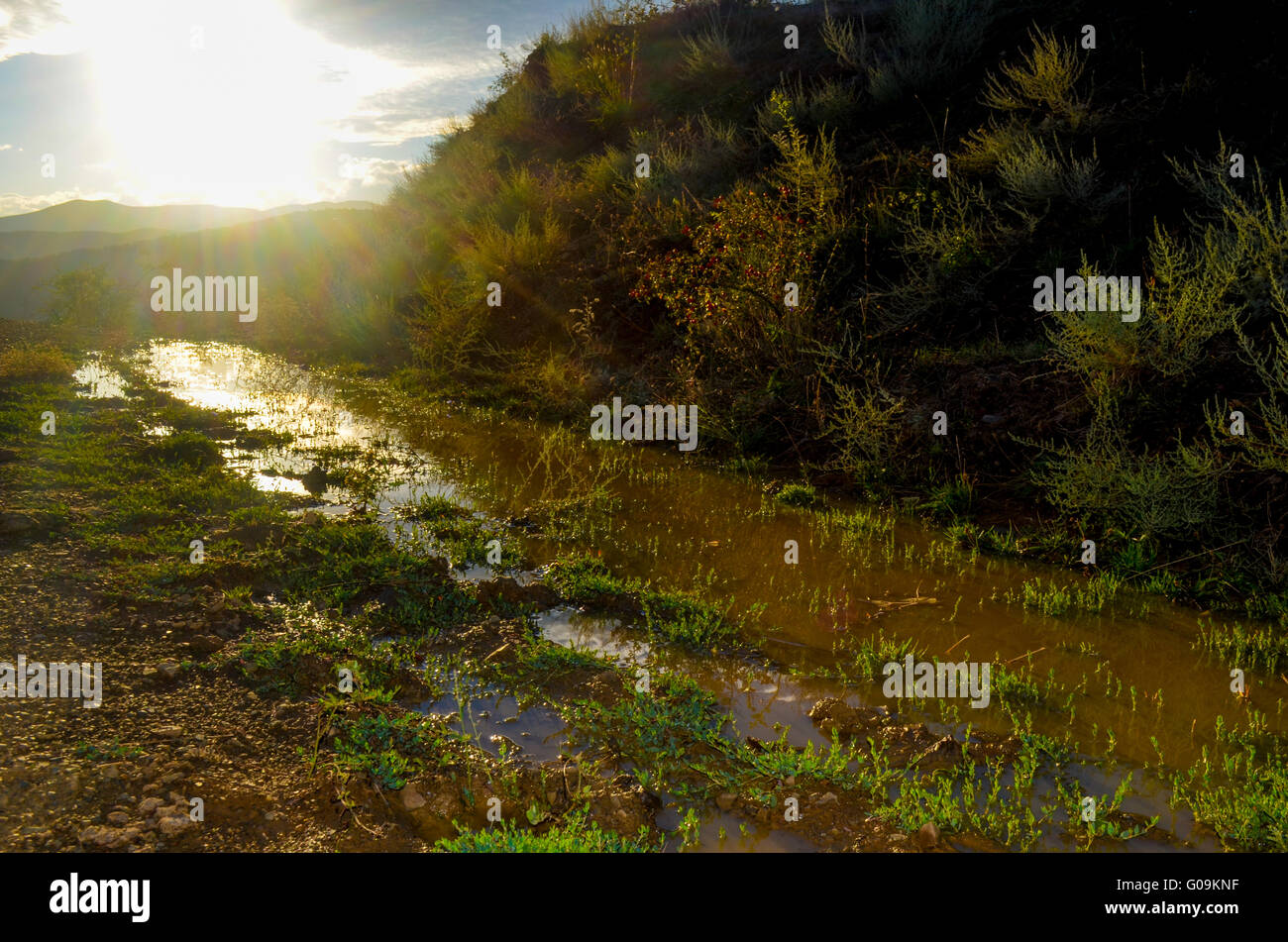A big dirty puddle - Stock Image