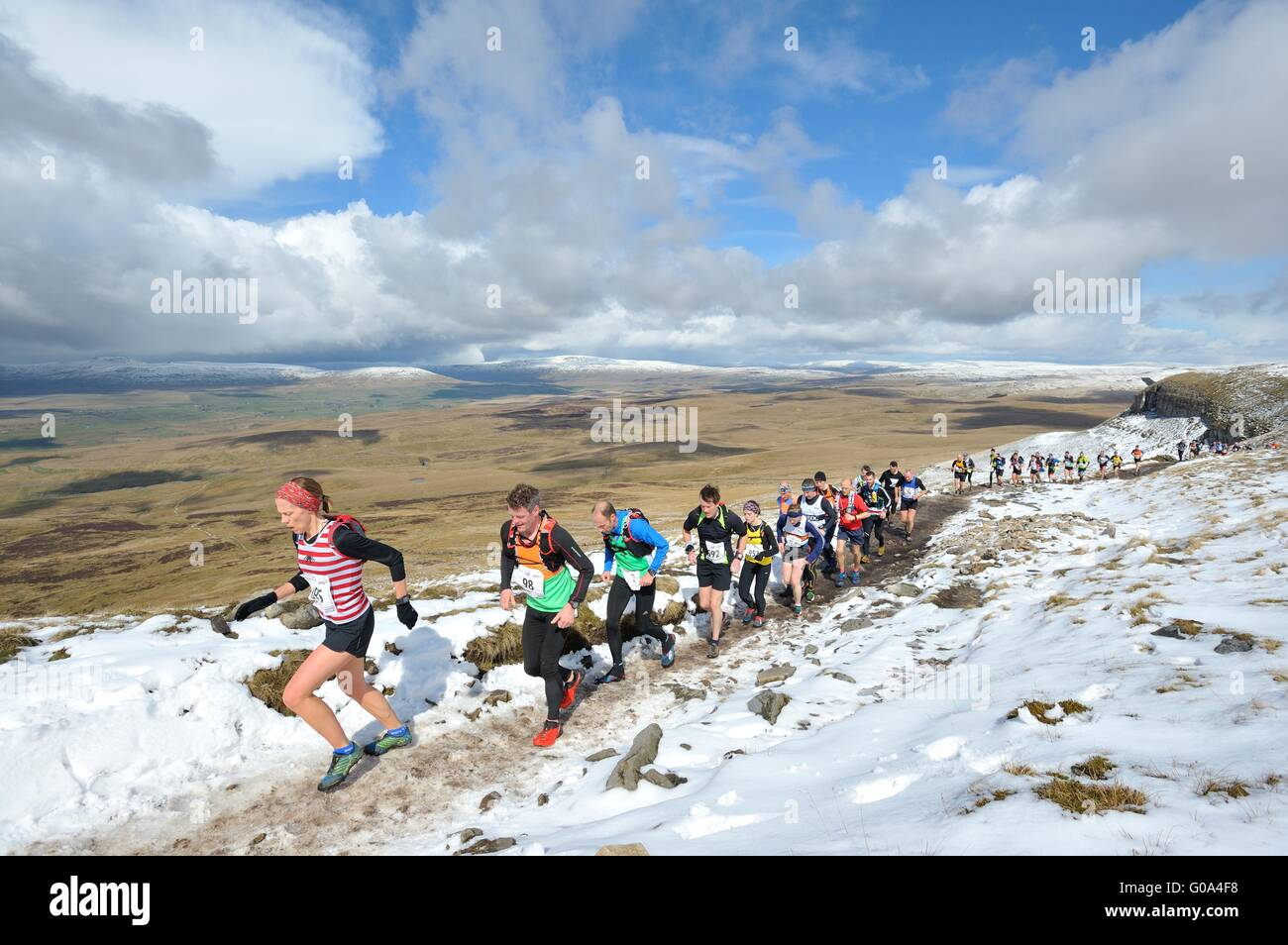 Runners in the Three Peaks Fell race on Pen-y-ghent in the Yorkshire Dales - Stock Image