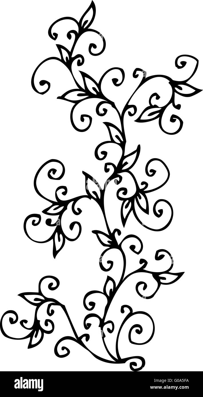 cv illustration black and white stock photos images alamy Offshore Resume Objective refined floral vignette cv stock image