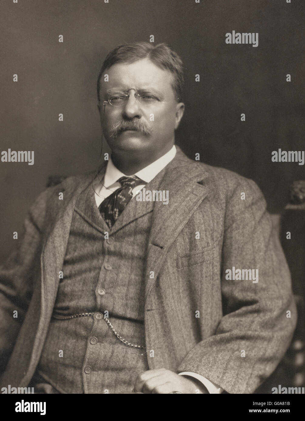 Theodore Roosevelt, half-length portrait, seated, facing slightly left - Stock Image