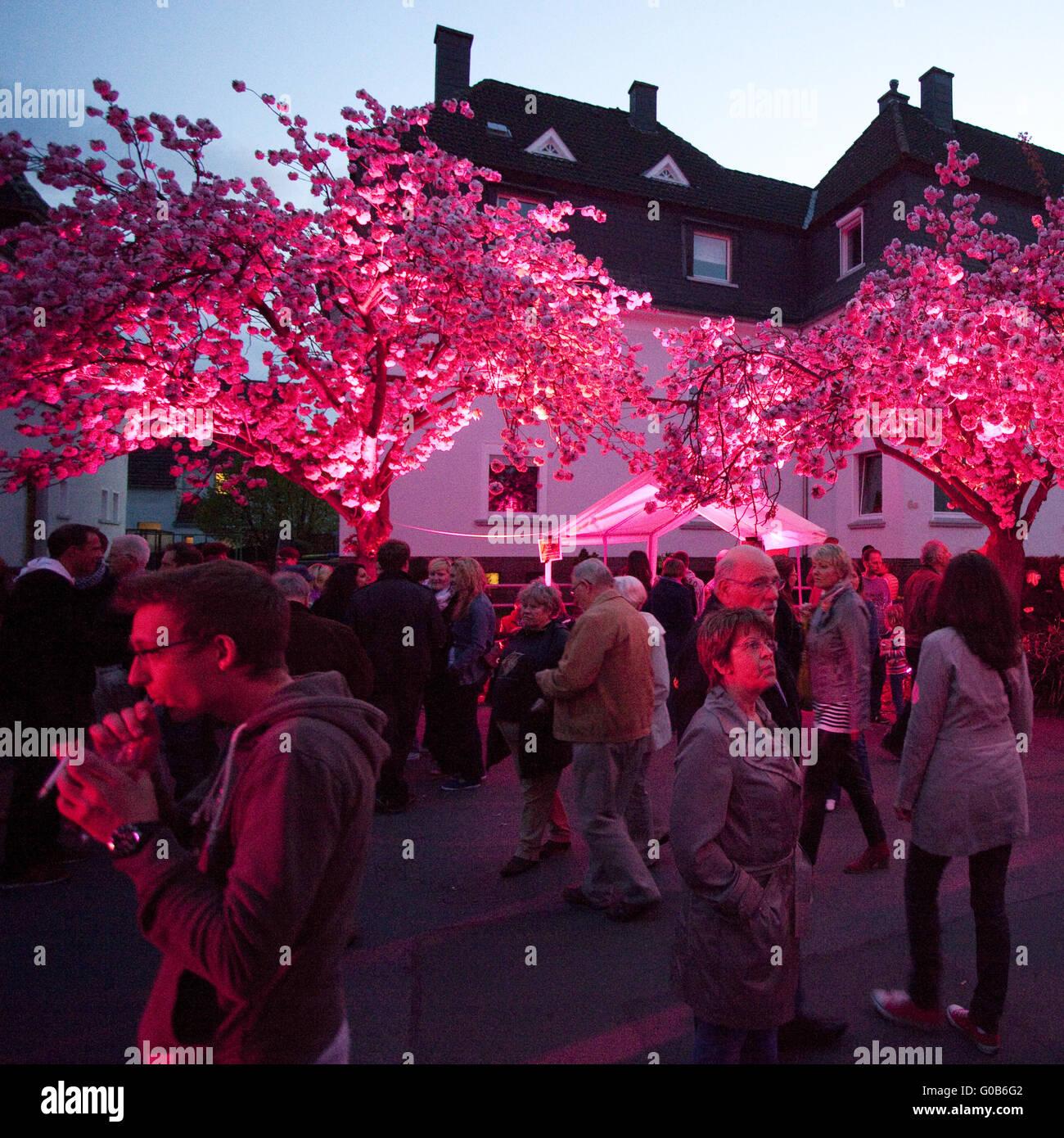 Event Cherry Blossom Festival, Schwerte, Germany - Stock Image