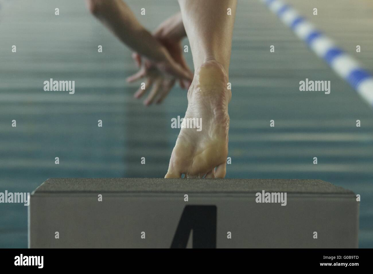 Start to swimming - Stock Image