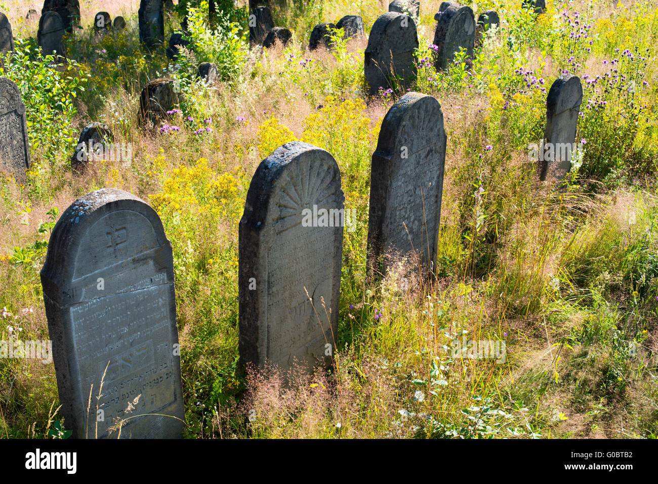 Old abandoned Jewish cemetery in the Ukrainian Carpathians - Stock Image