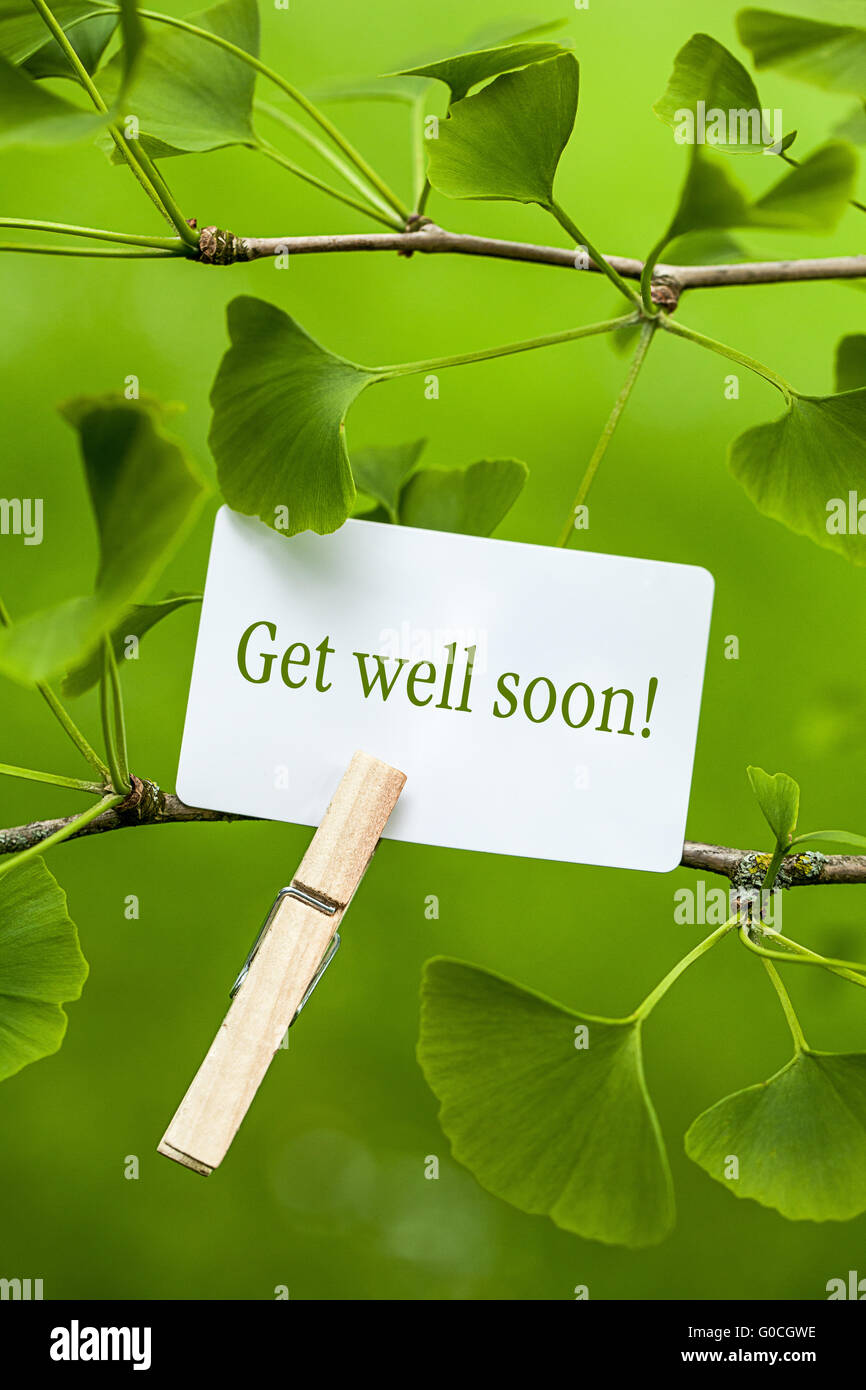 the words get well soon in a ginkgo tree