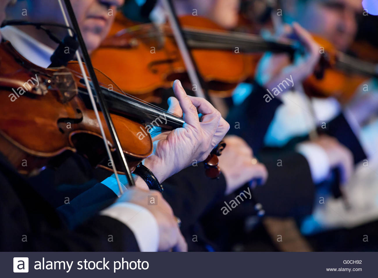 Violin players close up during a classical concert - Stock Image