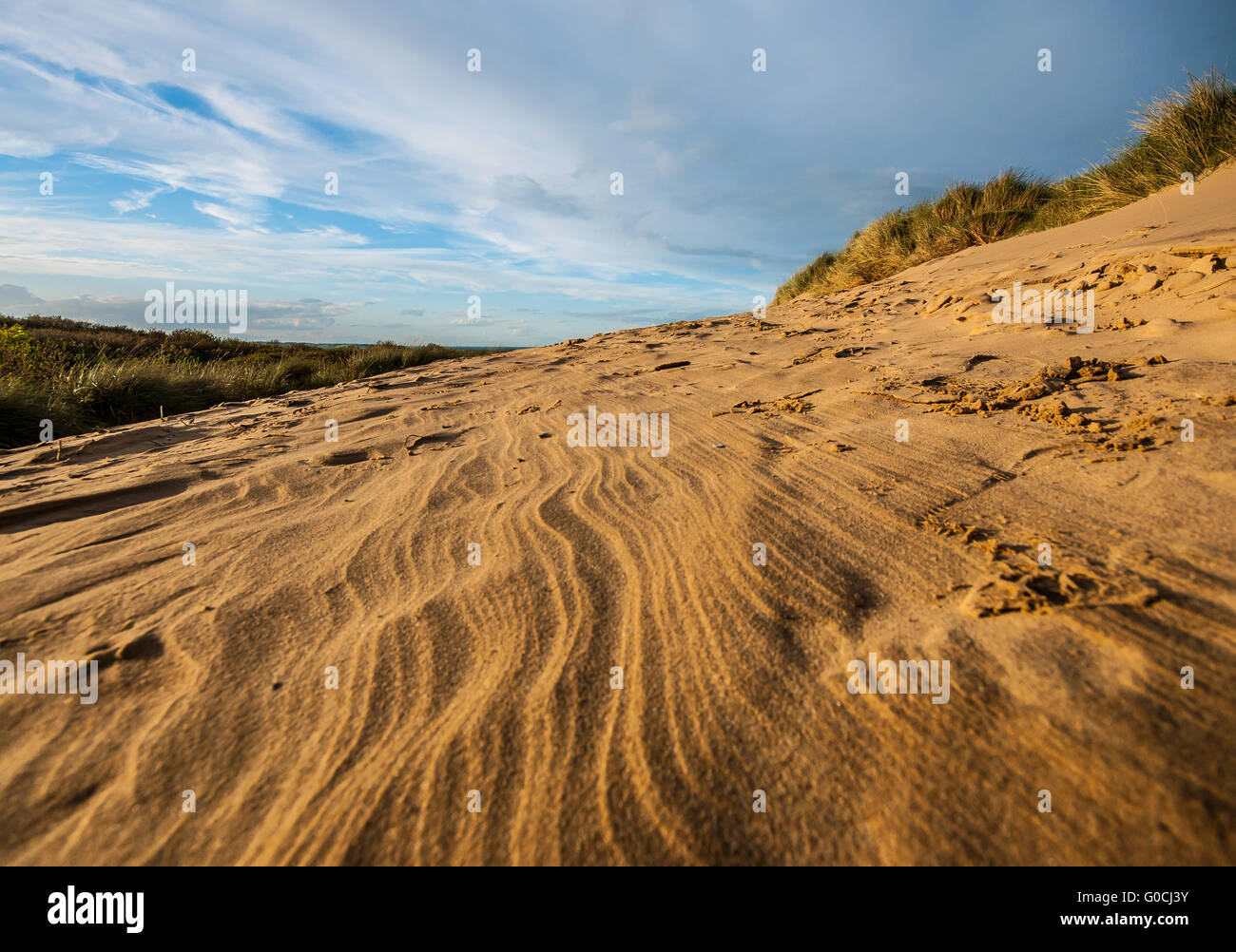Camber Sands is the beach at the village of Camber (near Rye), East Sussex, England. It is the only sand dune system - Stock Image