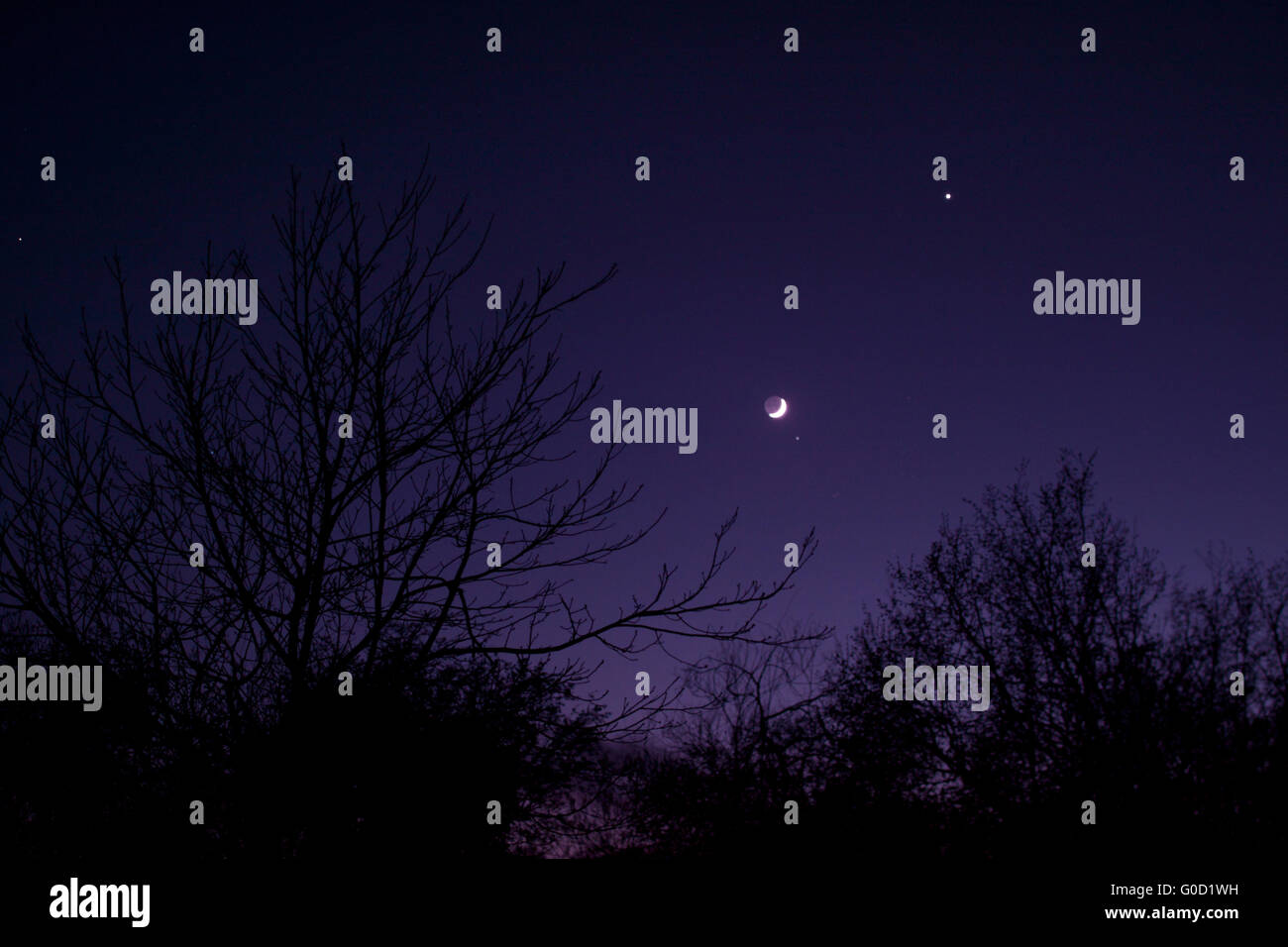 Nightsky with Moon, Venus and Aldebaran - Stock Image