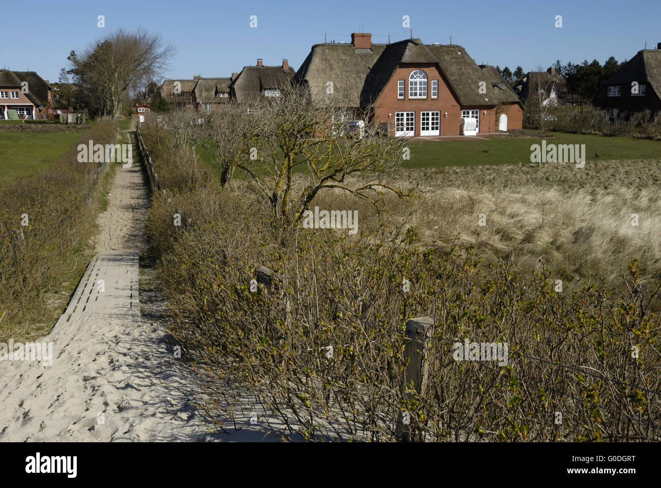 Friesian Houses in the Dunes Stock Photo