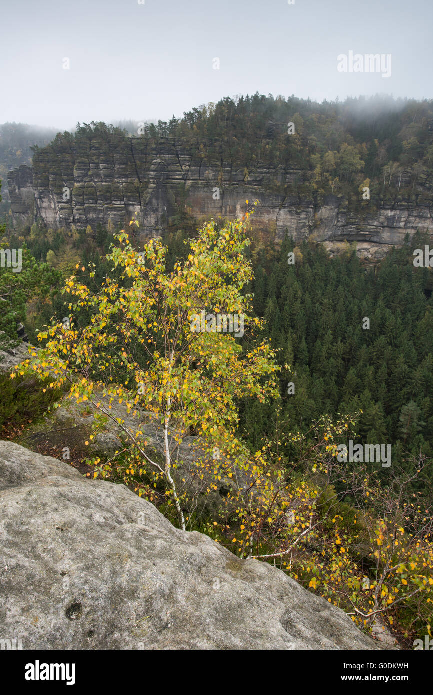 Elbe Sandstone Mountains - Stock Image