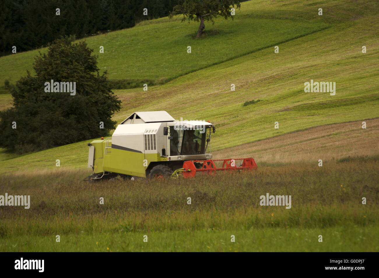 Harvesting hay tractor work on field make haystack Stock Photo
