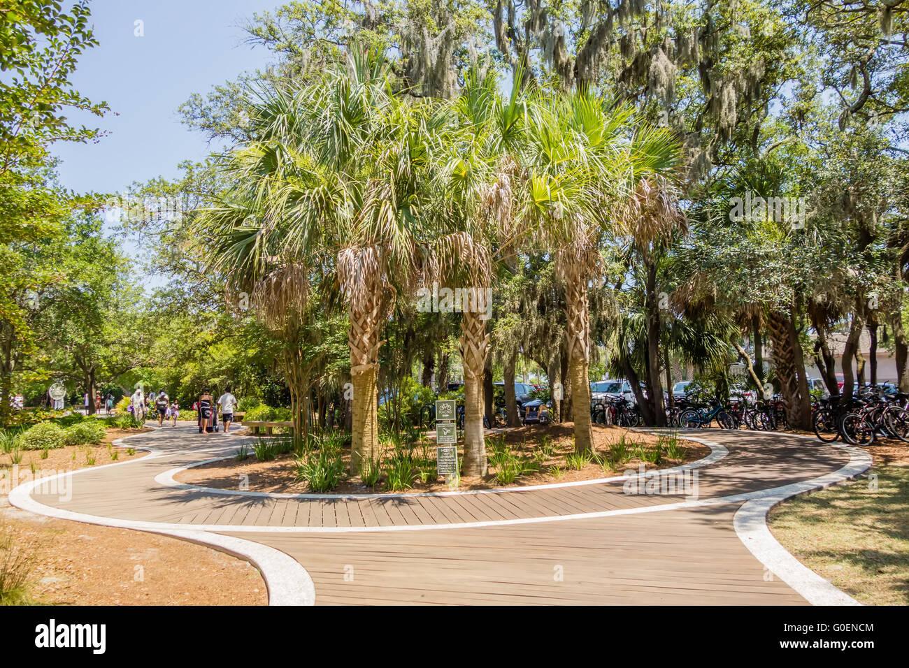 palm trees in georgia state usa Stock Photo: 103586356 - Alamy