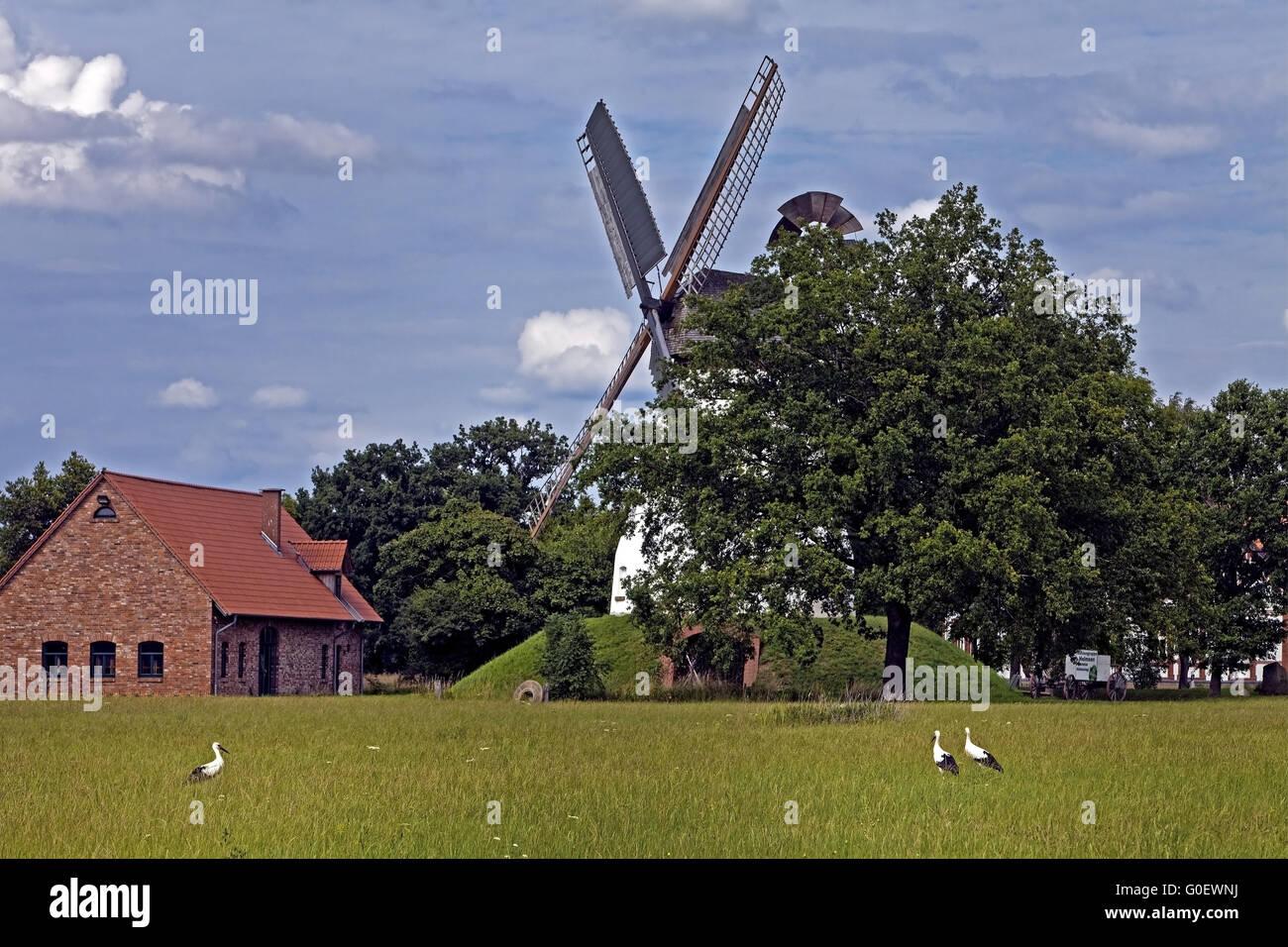windmill Heimsen, Petershagen, Germany - Stock Image