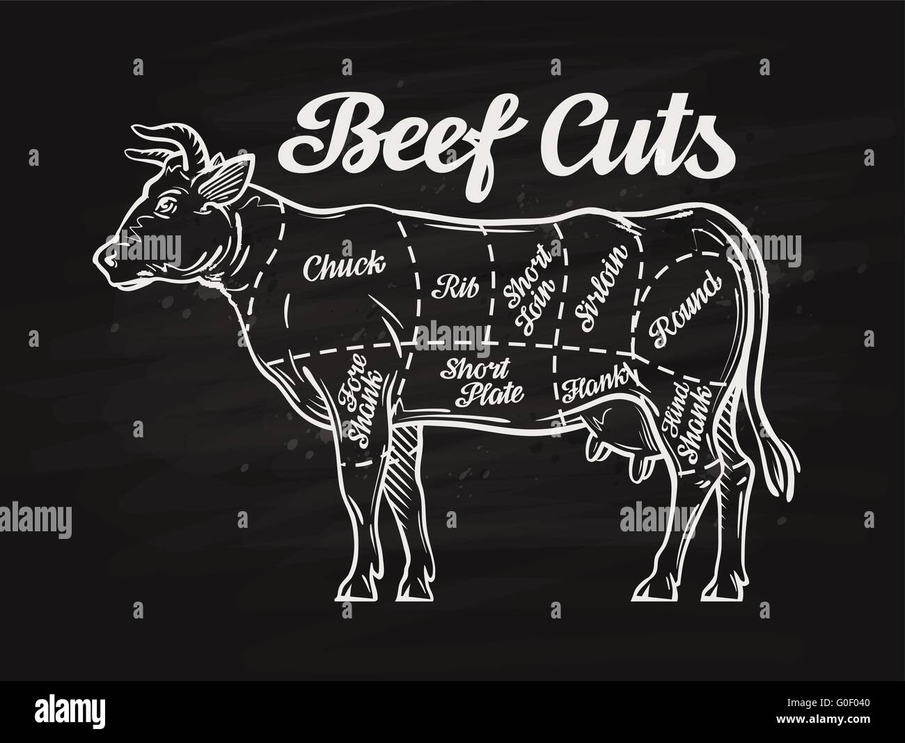 beef cuts drawing stock photos beef cuts drawing stock images alamy