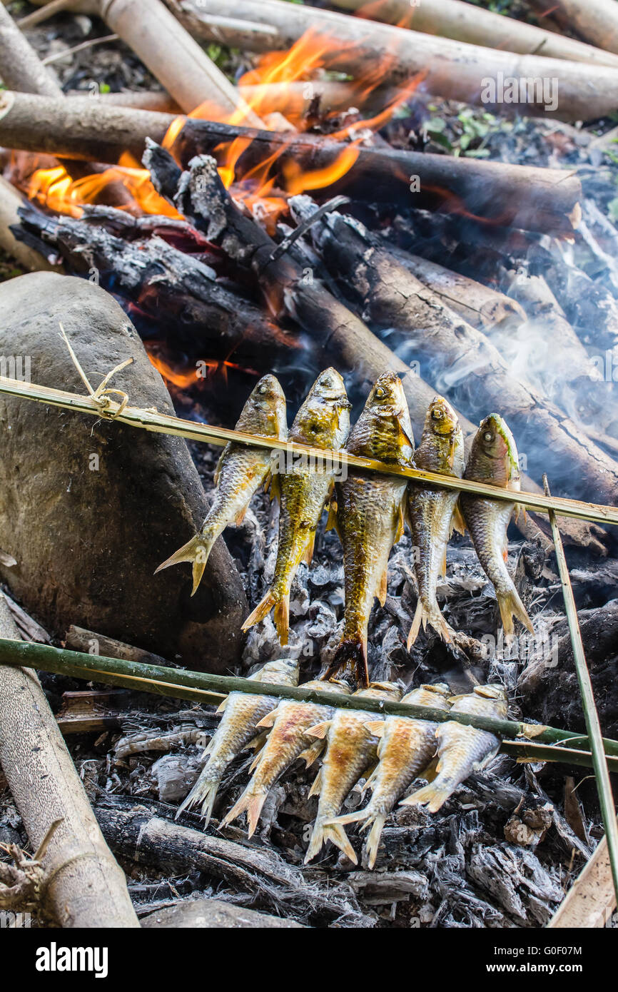 Fish Barbecue Over A Campfire