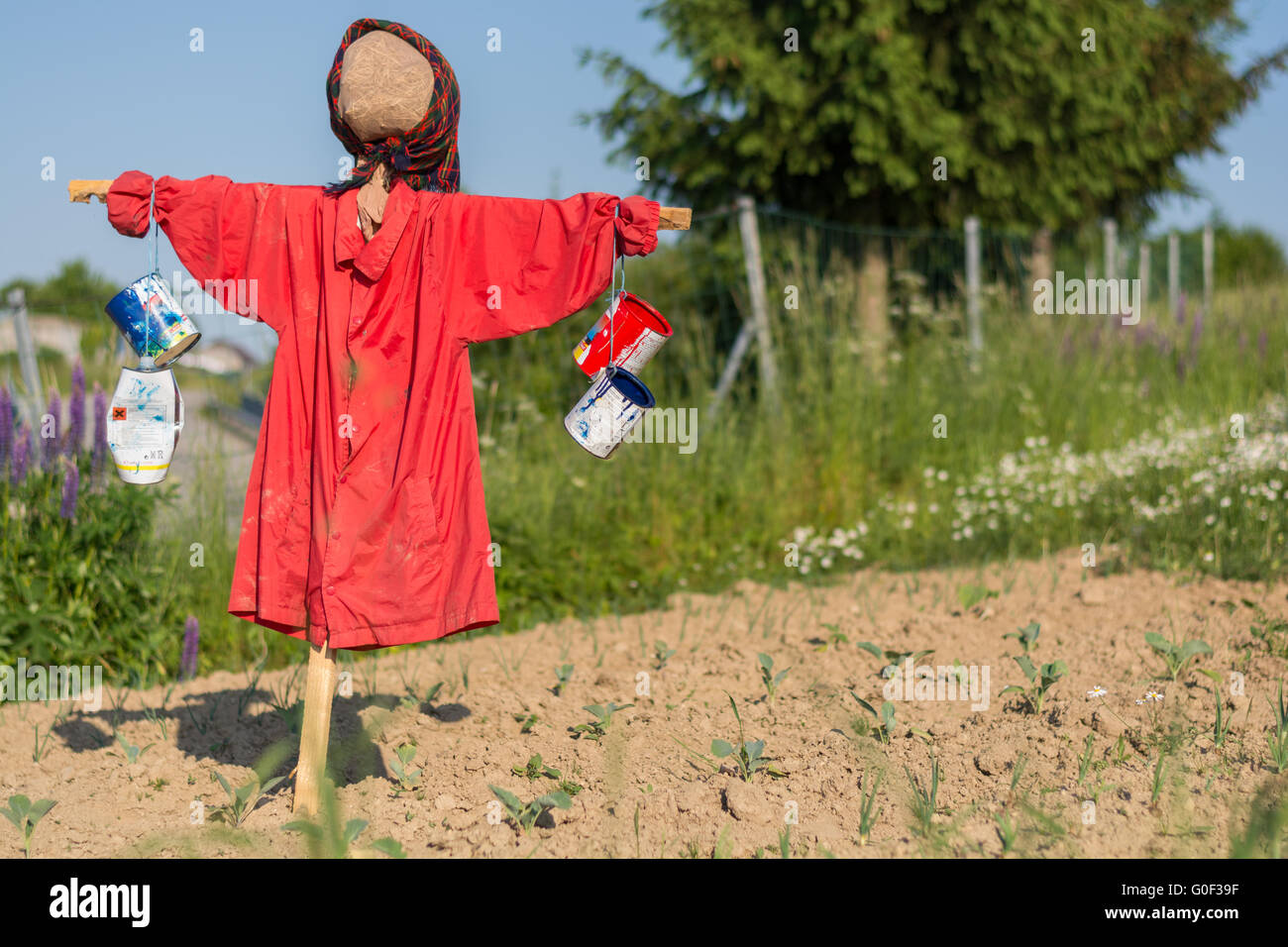 funny clad scarecrow in a field - Stock Image