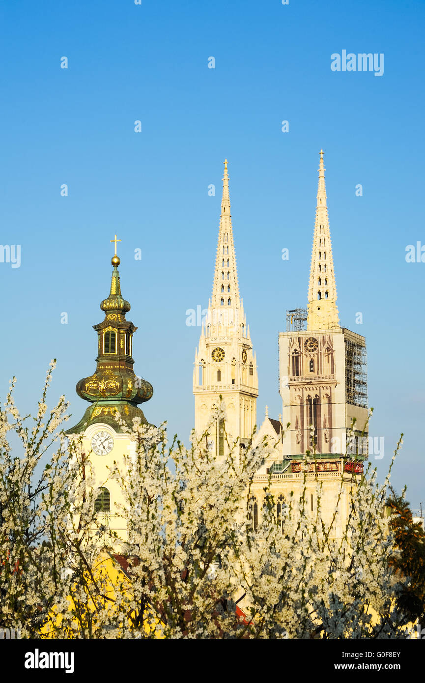 Zagreb Cathedral and St. Mary's Church in Spring - Stock Image