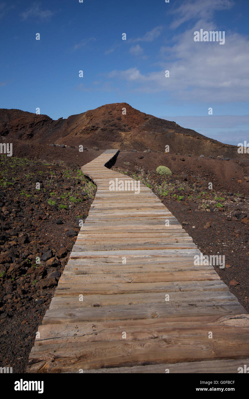 wooden path in rocky landscape / hiking path - Stock Image