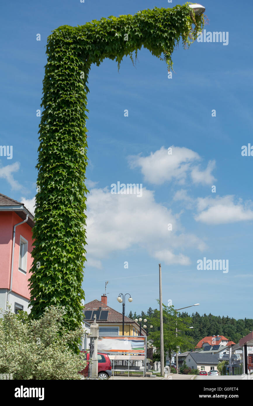 With creeper-covered street lamp Stock Photo