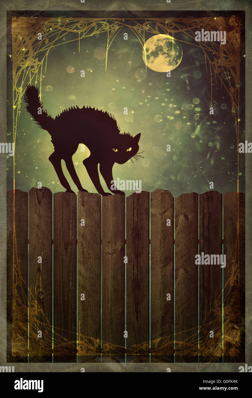 Black cat on old wood fence at  night with vintage - Stock Image