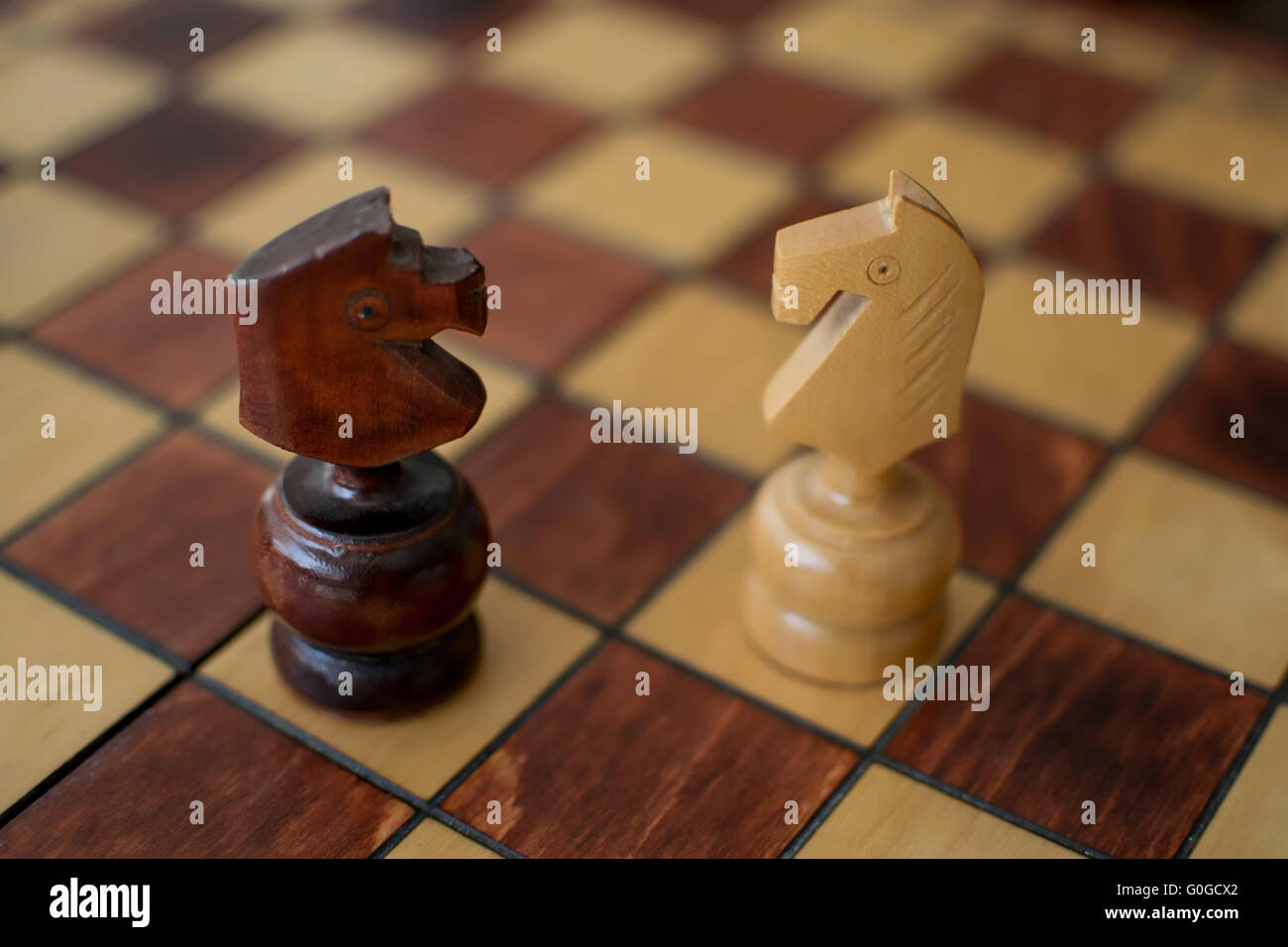 Two Knights on a wooden chessboard Stock Photo