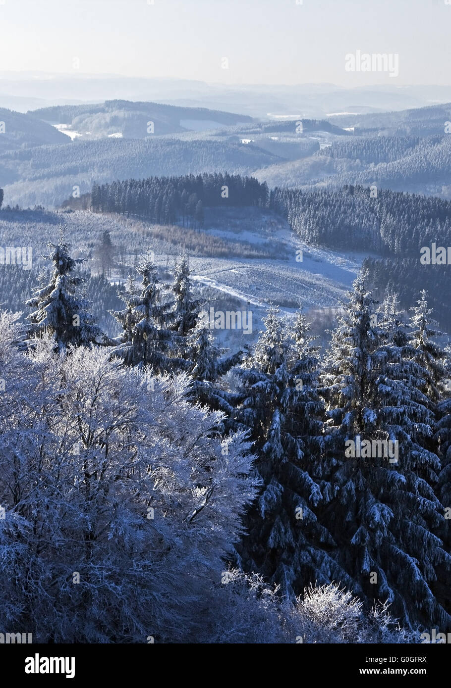 view to low mountain range near Wildewiese in winter, Germany, North Rhine-Westphalia, Sauerland - Stock Image