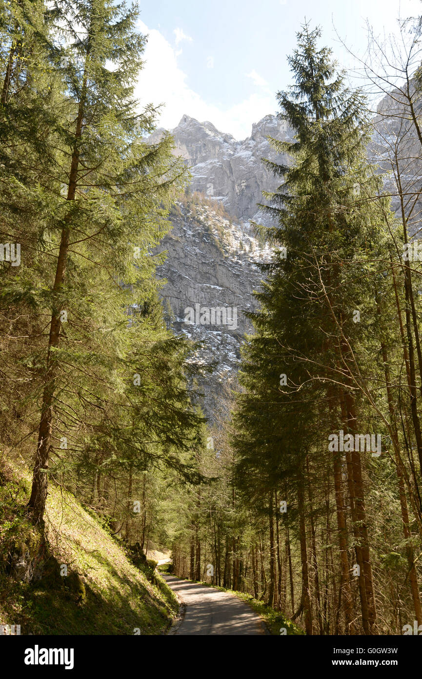 Hike above Scharitzkehlalm and below Hoher Göll mountain 2,522 m (8,274 ft), Endstal, Berchtesgaden Alps, Germany Stock Photo