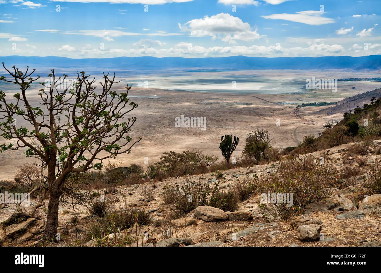 view from the rim into the Ngorongoro crater, Ngorongoro Conservation Area, UNESCO world heritage site, Tanzania, - Stock Image