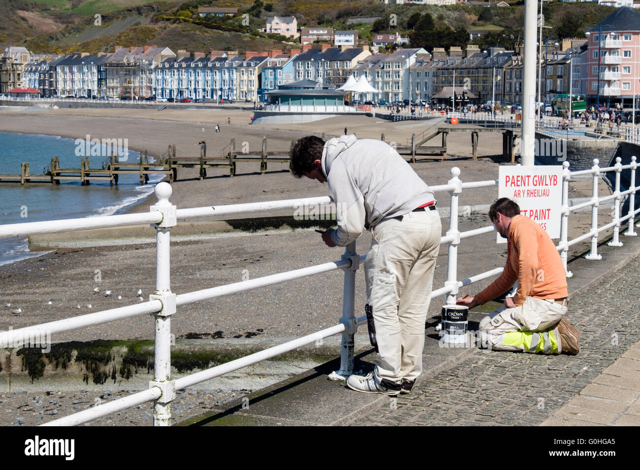 Workmen painting white railings on seafront promenade ready for holiday season in seaside resort. Aberystwyth Ceredigion - Stock Image