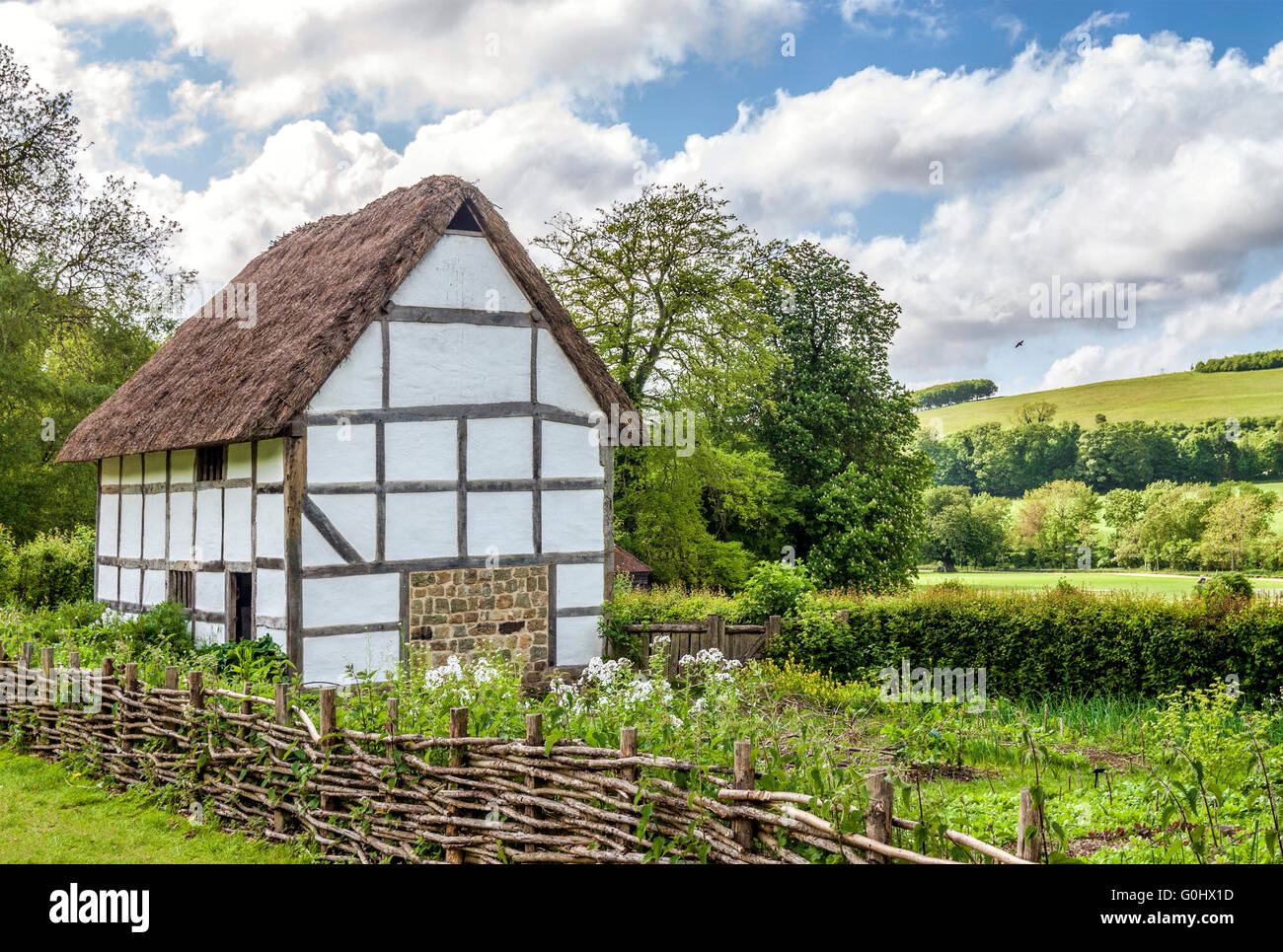 English Farmhouse in the middle of a field at the Weald & Downland Open Air Museum of Singleton, West Sussex, - Stock Image