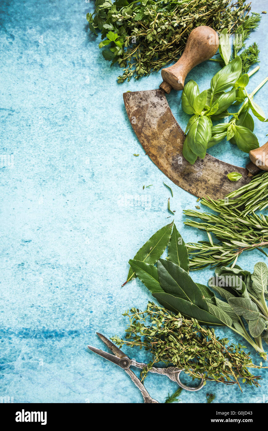 Herbs and spices border background, flat lay from above Stock Photo ...
