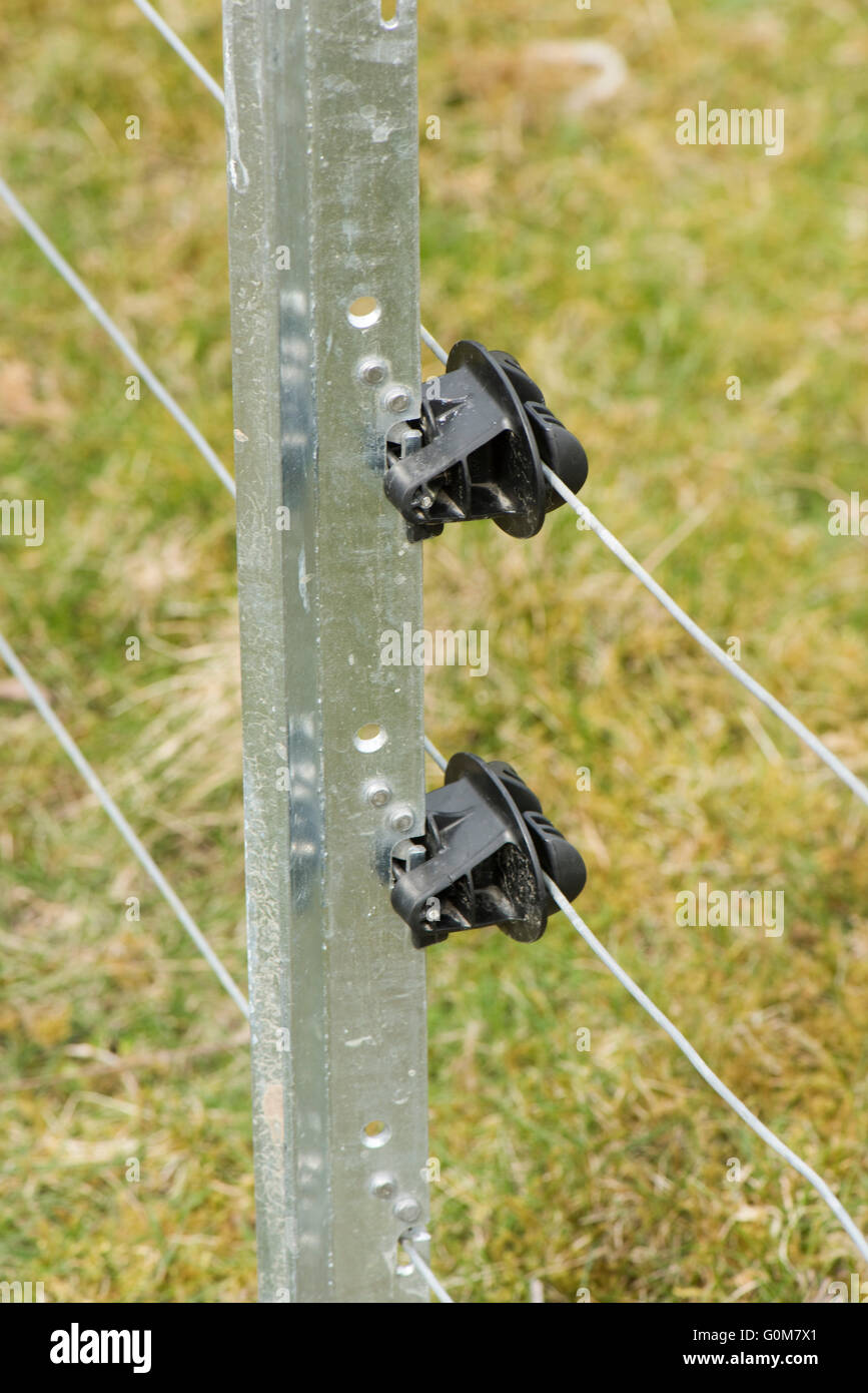 Galvanised metal post with wires and insulators for and electric fence to pen livestock, Berkshire - Stock Image