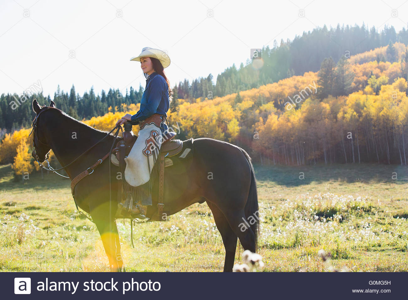 Woman sitting horseback in sunny autumnal field - Stock Image