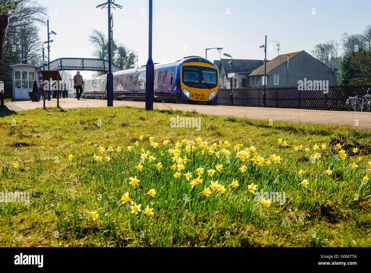 First TransPennine Express train at Arnside station Cumbria - Stock Image