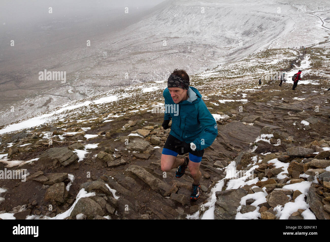 A runner makes the ascent to summit of Ingleborough during the annual Three Peaks Race - Stock Image