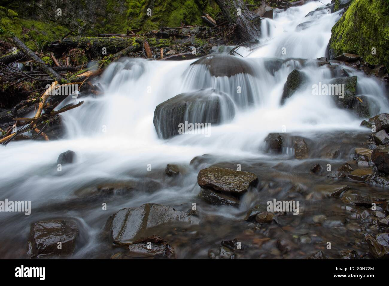 Starvation Creek, Columbia River Gorge National Scenic Area, Oregon - Stock Image