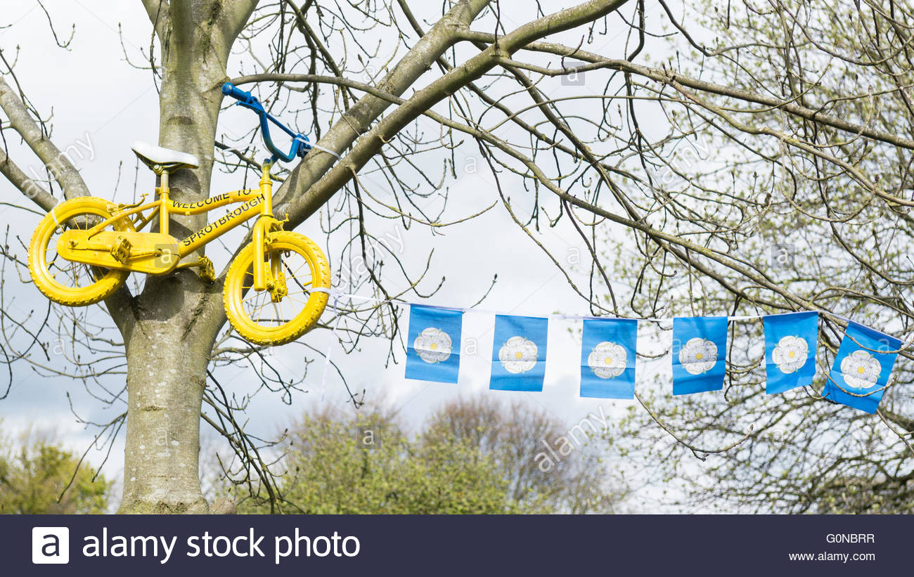 Tour de Yorkshire 2016 yellow painted bike and yorkshire county flag bunting in the Yorkshire village of Sprotbrough - Stock Image