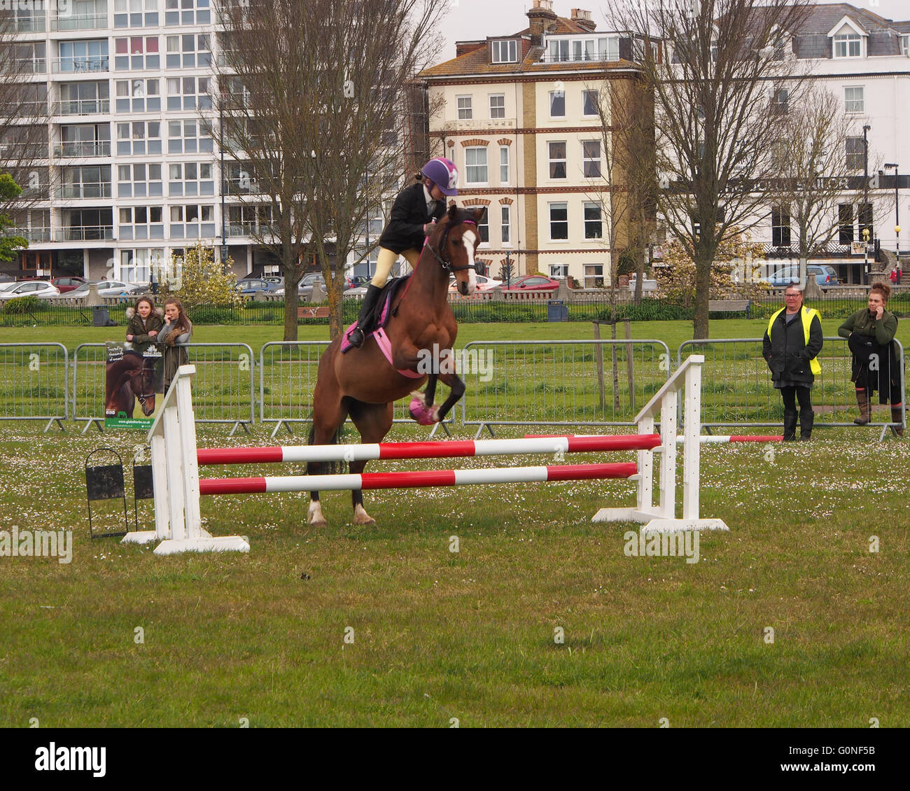 A young girl jumps a hurdle on her horse at a showjumping event - Stock Image