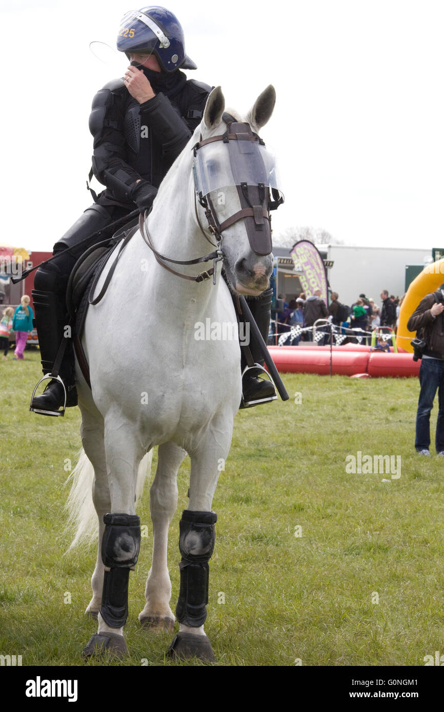 Police Horse And Rider In Full Riot Gear Stock Photo Alamy