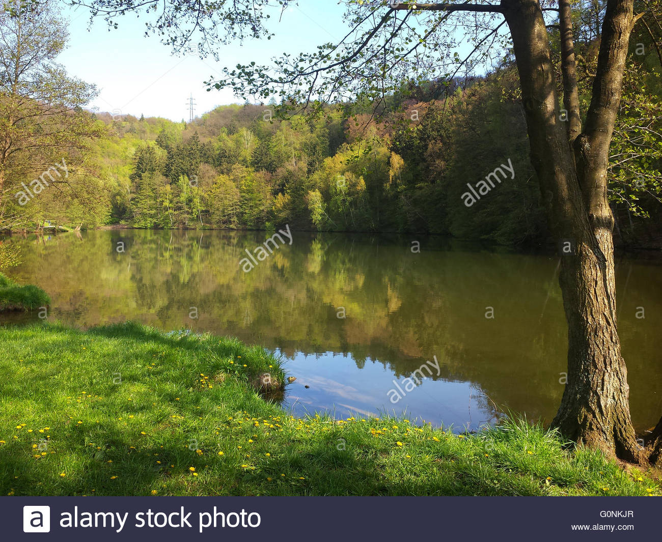 Beautiful sunny spring day at Marianske Udoli at the shore of lake. Brno, Czech Republic - Stock Image